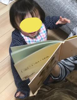 【0歳】うちの娘の、絵本に対する反応の変化についてのレポート