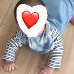 生後5、6ヶ月のタイムスケジュール、成長、遊びなどアレコレ。